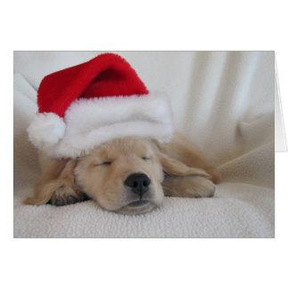 Tarjeta Perrito del gorra de Santa del navidad
