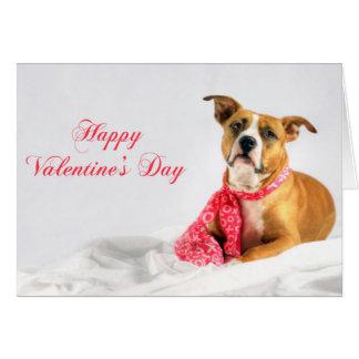 Tarjeta Perrito feliz de Pitbull del día de San Valentín