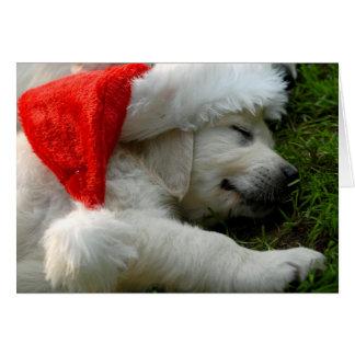 Tarjeta Perrito lindo de Labrador con el gorra de Navidad