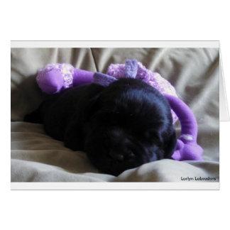 Tarjeta Perrito negro del labrador retriever en una