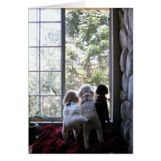 Tarjeta Perritos en la ventana