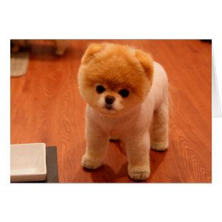 Tarjeta perritos Pomeranian-lindos del perro-pom del