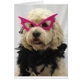 Tarjeta perro blanco, traje, divertido, humor, vidrios en
