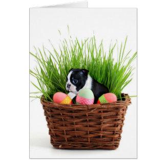 Tarjeta Perro de Pascua Boston Terrier