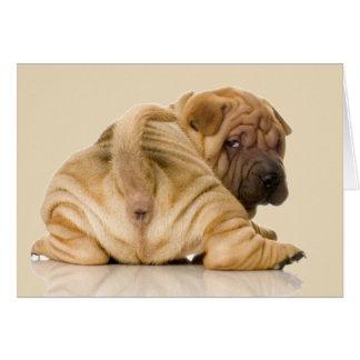 Tarjeta Perro de perrito de Shar-pei del chino