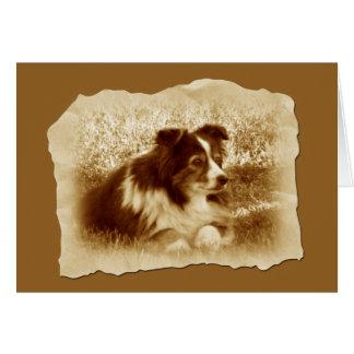 Tarjeta Perro del vintage en tonos de la sepia