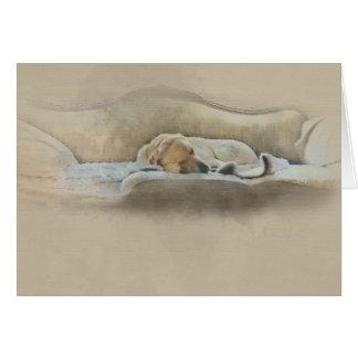 Tarjeta perro el dormir