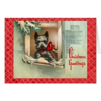 Tarjeta Perro negro del escocés en rojo de la ventana