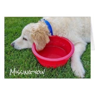 Tarjeta perro-que falta triste usted