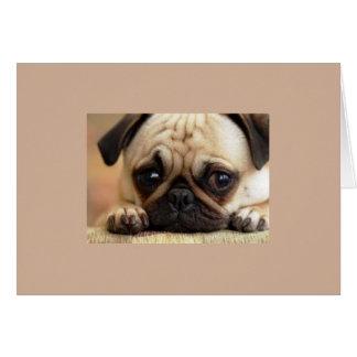 Tarjeta Perro triste que le falta