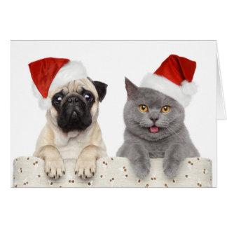 Tarjeta Perro y gato en gorra rojo del navidad