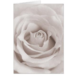 Tarjeta Personalizado color de rosa blanco y poner crema