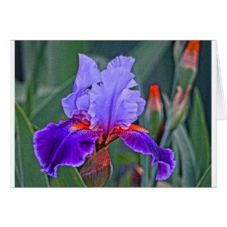 Tarjeta Pintura del iris, sombras de la púrpura con acento