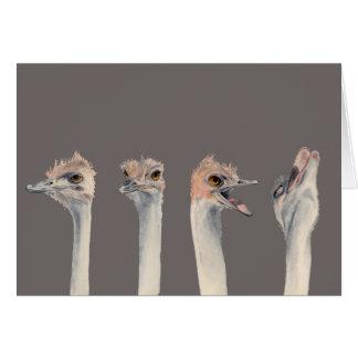 """Tarjeta """"Pintura divertida de las avestruces de la reina"""