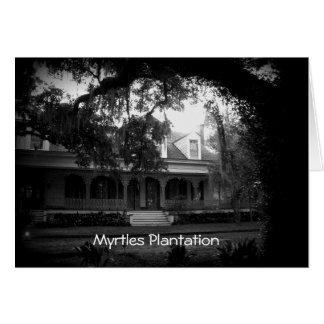Tarjeta Plantación de los mirtos en blanco y negro