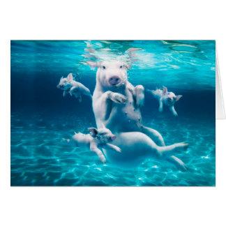 Tarjeta Playa del cerdo - cerdos de la natación - cerdo