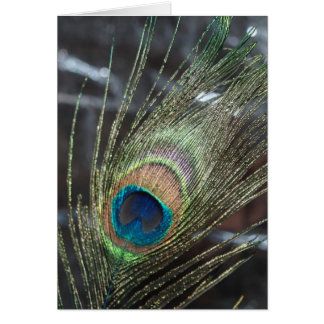 Tarjeta Pluma metálica del pavo real