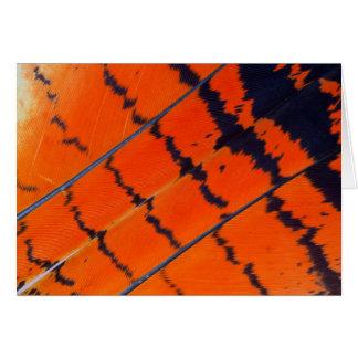 Tarjeta Plumas anaranjadas y negras del Cockatoo