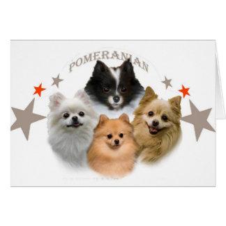 Tarjeta Pomeraniani no puede tener apenas uno carda