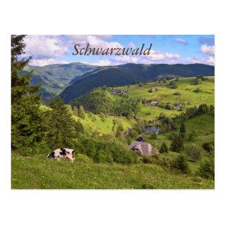 Tarjeta postal: Prados y una vaca con opinión de