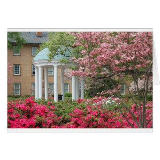 Tarjeta Primavera en Chapel Hill