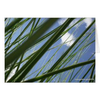 Tarjeta Prisma de la hierba - Notecard