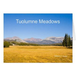 Tarjeta Productos de Yosemite California de los prados de
