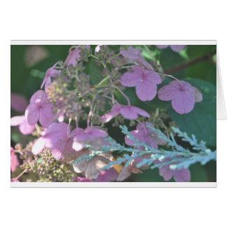 Tarjeta Productos florales
