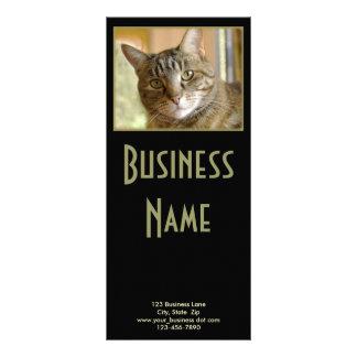 Tarjeta Publicitaria Cierre gris del Tabby encima de la fotografía