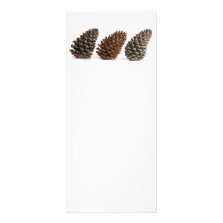 Tarjeta Publicitaria Tres pinecones