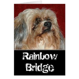 Tarjeta Puente del arco iris - mi compinche