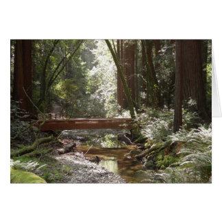 Tarjeta Puente II de maderas de Muir