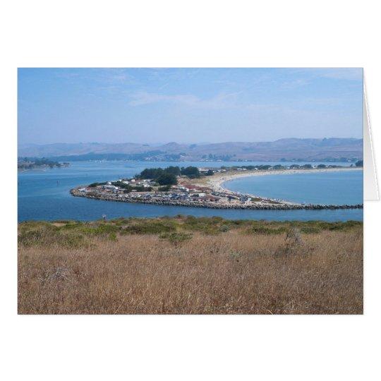Tarjeta Puerto del Bodega y parque de Doran