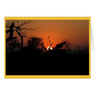 Tarjeta Puesta del sol de Kudu