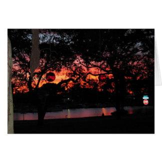 Tarjeta Puesta del sol de la Florida