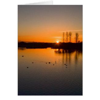 Tarjeta Puesta del sol sobre Abberton