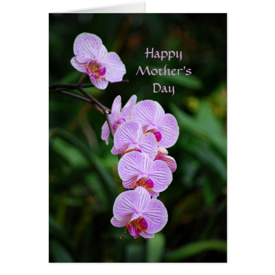 Tarjeta púrpura feliz de la orquídea del