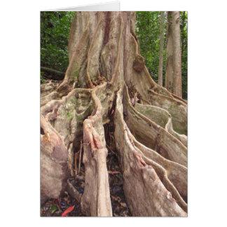 Tarjeta Raíces tropicales de la higuera