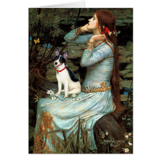 Tarjeta Rata Terrier - Ofelia asentados