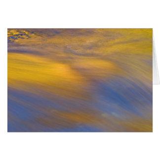 Tarjeta Reflexión de oro del otoño en la agua corriente