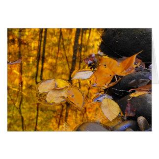 Tarjeta Reflexiones del oro del otoño