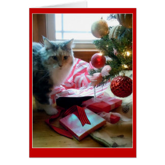 Tarjeta Regalo de Navidad de apertura reventado gato