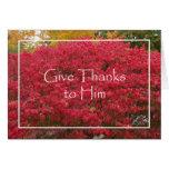Tarjeta religiosa de la acción de gracias -- Hojas