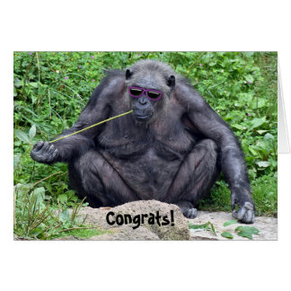 Tarjeta retiro-chimpancé con las gafas de sol