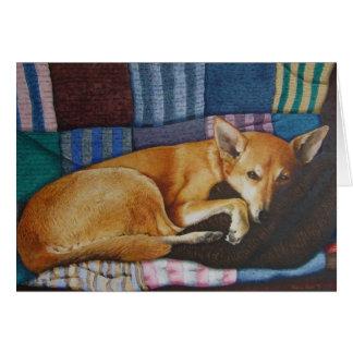Tarjeta retratos del perro de la raza de la cruz de