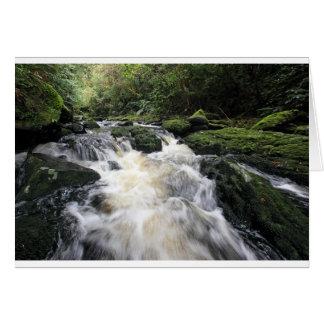 Tarjeta Río Nueva Zelanda de Mclean