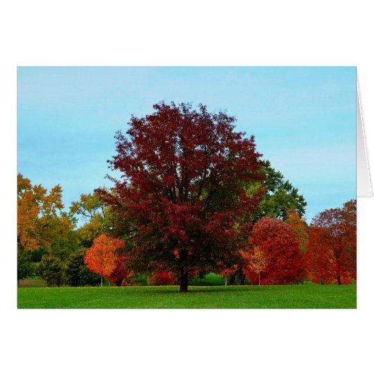 Tarjeta Roble rojo en otoño
