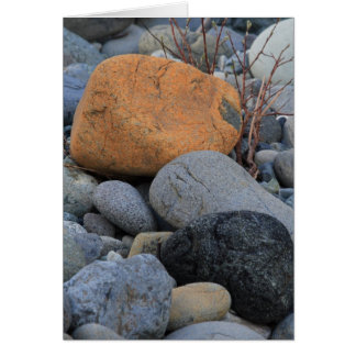 Tarjeta Rocas en el bosque de la secoya