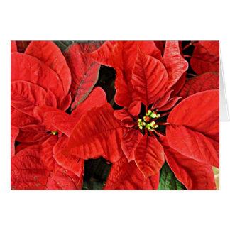 Tarjeta roja del día de fiesta del navidad de los
