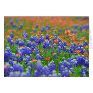 Tarjeta roja y azul del Wildflower